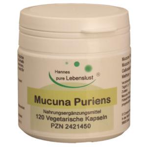Mucuna Pruriens Kapseln Extrakt (40% L-Dopa)