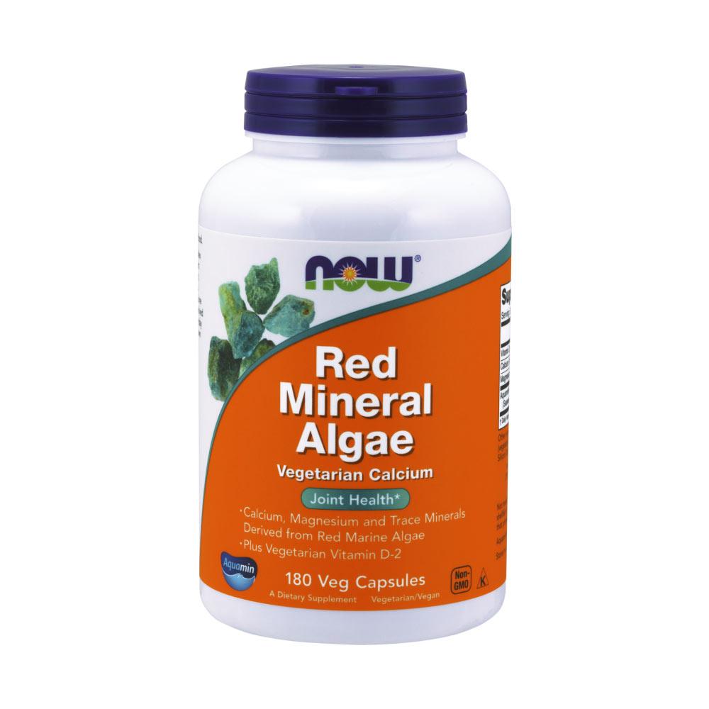 Red Mineral Algae 180 Kapseln Kalzium Präparat von NOW Foods