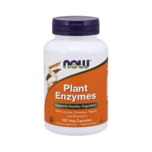 Plant Enzymes 120 Kapseln